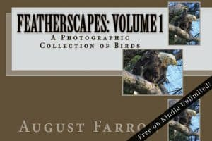 Cover for FeatherScapes: Volume 1: A Photographic Collection of Birds