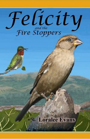 Cover for Felicity and the Fire Stoppers