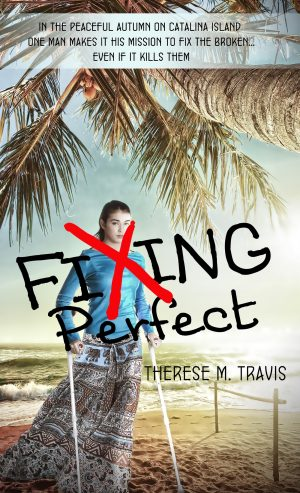 Cover for Fixing Perfect