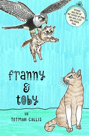 Cover for The Mystery of the Kidnapped Cat