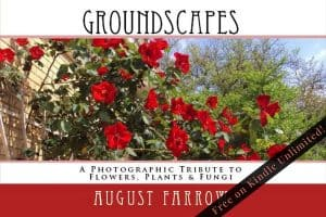 Cover for GroundScapes: A Photographic Tribute to Flowers, Plants & Fungi