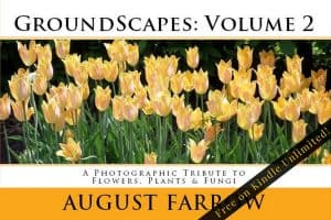Cover for GroundScapes: Volume 2: A Photographic Tribute to Flowers, Plants & Fungi