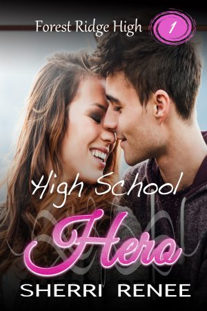 Cover for High School Hero