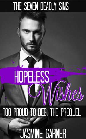 Cover for Hopeless Wishes