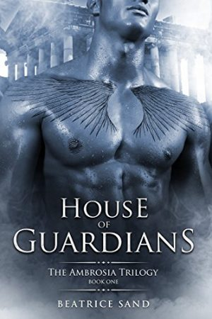 Cover for House of Guardians