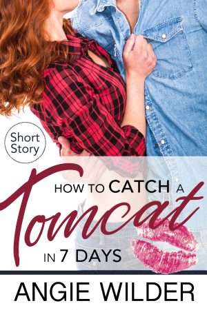 Cover for How to Catch a Tomcat in Seven Days