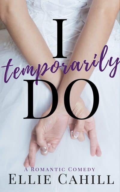 Cover for I Temporarily Do