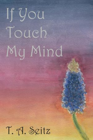 Cover for If You Touch My Mind
