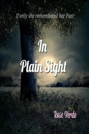 Cover for In Plain Sight