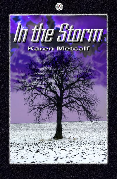 Cover for In the Storm