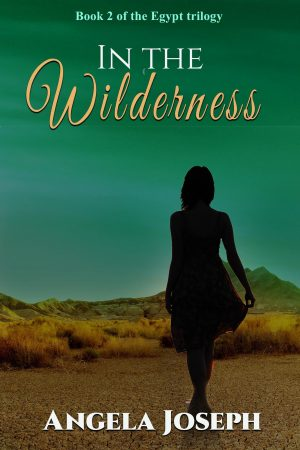 Cover for In the Wilderness