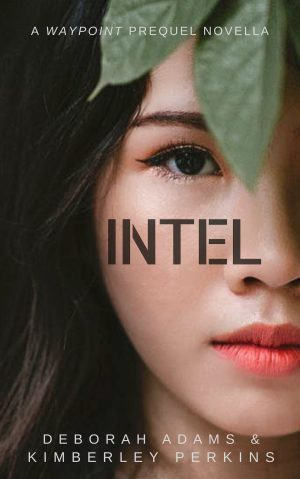 Cover for Intel