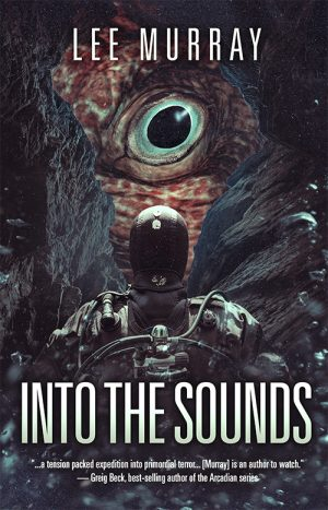 Cover for Into the Sounds