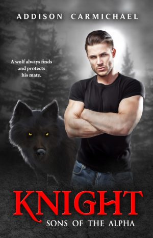 Cover for Knight