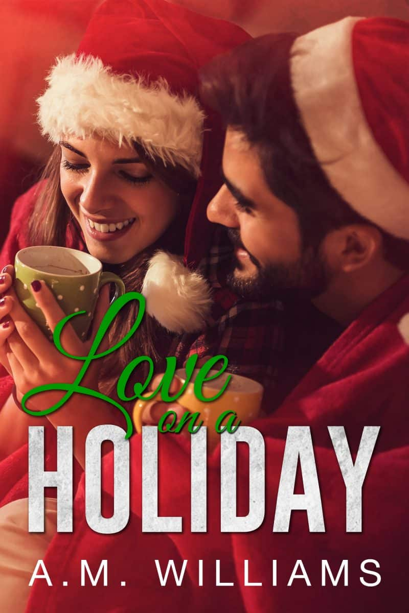Cover for Love on a Holiday