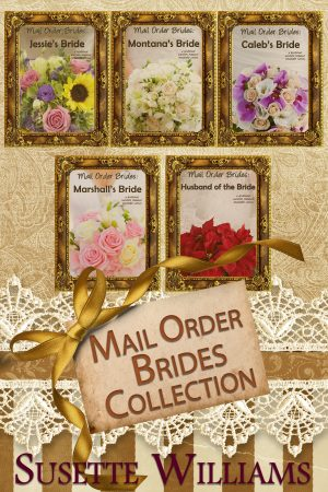 Cover for Mail Order Brides Collection