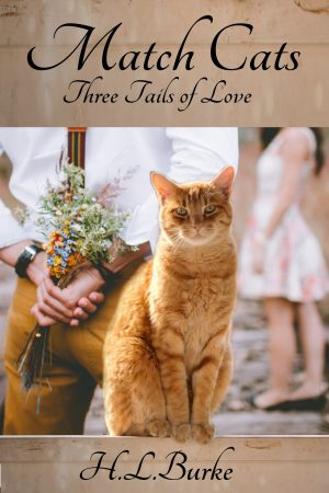 Cover for Match Cats: Three Tales of Love
