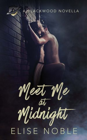 Cover for Meet Me at Midnight