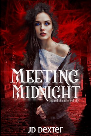 Cover for Meeting Midnight