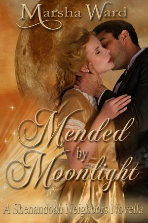 Cover for Mended by Moonlight