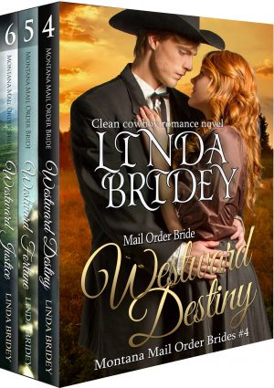 Cover for Montana Mail Order Bride Box Set