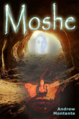 Cover for Moshe