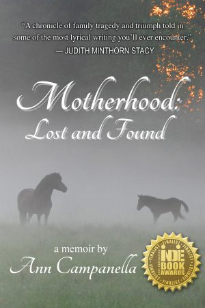 Cover for Motherhood: Lost and Found (first chapter)