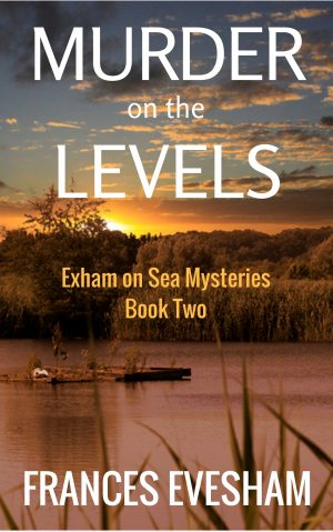 Cover for Murder on the Levels