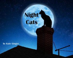 Cover for Night Cats: A Children's Picture Book