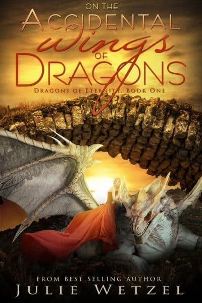 Cover for On the Accidental Wings of Dragons