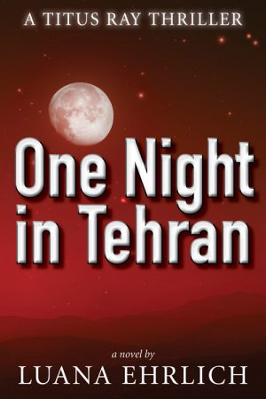 Cover for One Night in Tehran