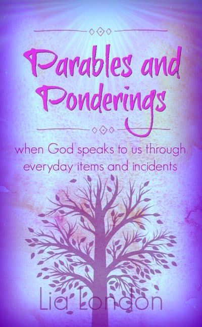 Cover for Parables and Ponderings