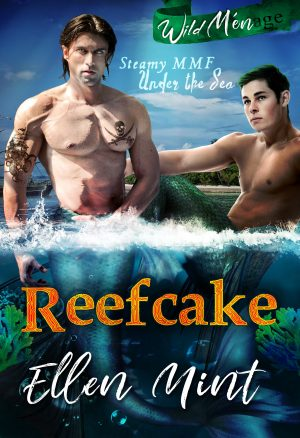 Cover for Reefcake