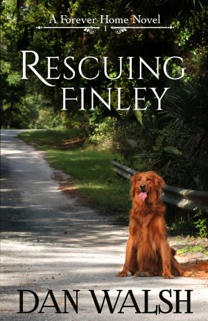 Cover for Rescuing Finley