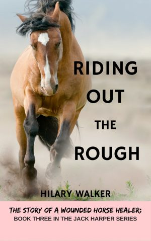Cover for Riding Out the Rough