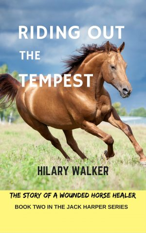 Cover for Riding Out the Tempest