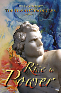 Cover for Rise to Power