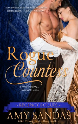 Cover for Rogue Countess