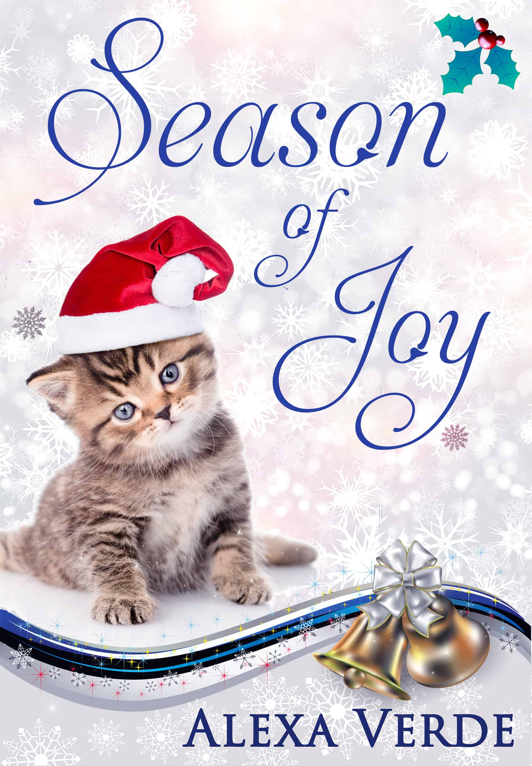 Cover for Season of Joy