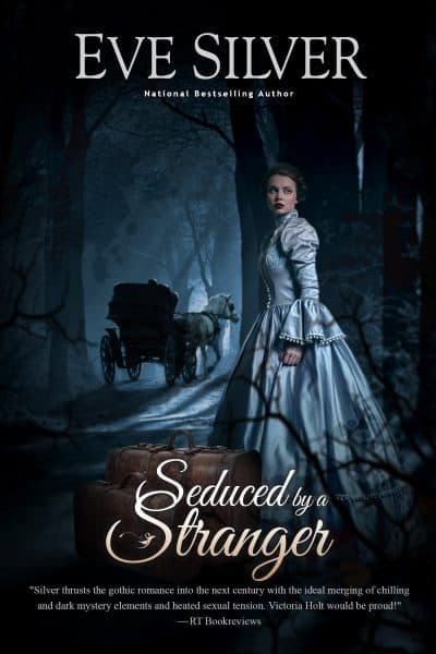 Cover for Seduced by a Stranger