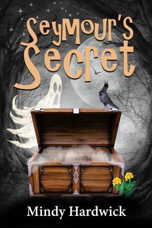 Cover for Seymour's Secret
