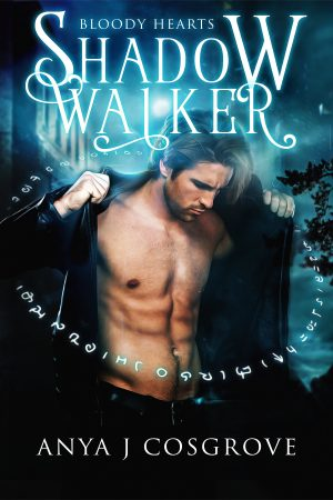 Cover for Shadow Walker