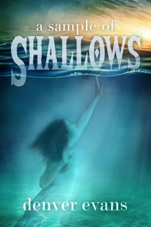 Cover for Shallows (Sample)