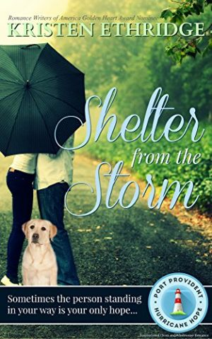 Cover for Shelter from the Storm