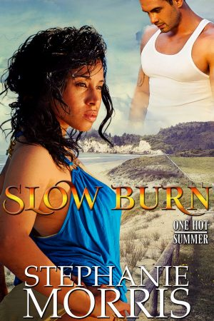 Cover for Slow Burn
