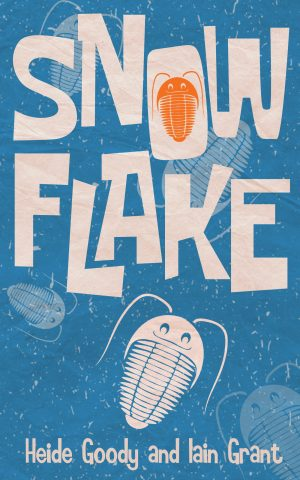 Cover for Snowflake