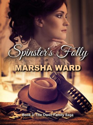 Cover for Spinster's Folly