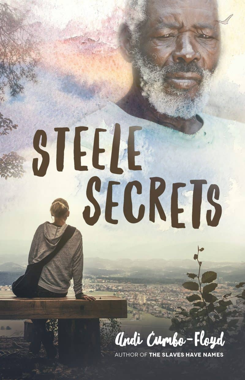 Cover for Steele Secrets