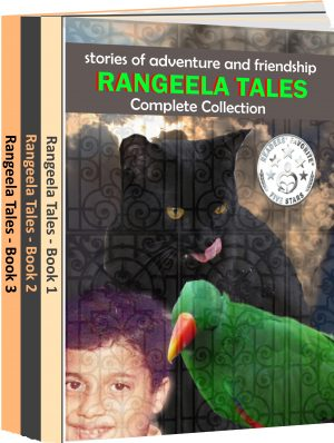 Cover for Stories from Rangeela Tales - Box Set
