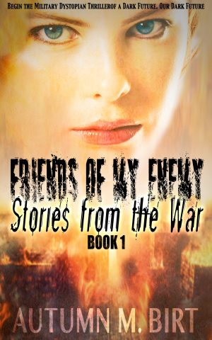 Cover for Stories from the War